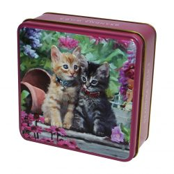 KITTENS TIN SHORTBREAD 100g