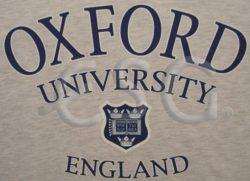 GREY OXFORD T-SHIRT – XL