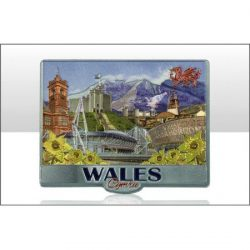WALES PHOTO MONTAGE FOIL MAGNET