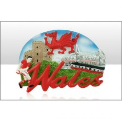 WALES WORD/MONTAGE RESIN MAGNET