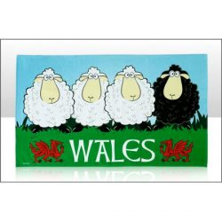 WALES BLACK SHEEP TEATOWEL