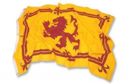 2X3 RAMPANT LION FLAG