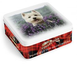 Square Westie Dog in  Tin (shortbread fingers) 90g