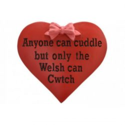 DISC WALES CWTCH HEART RESIN MAGNET