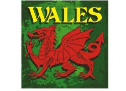 WALES GLASS COASTERS DRAGON DESIGN SET OF 4