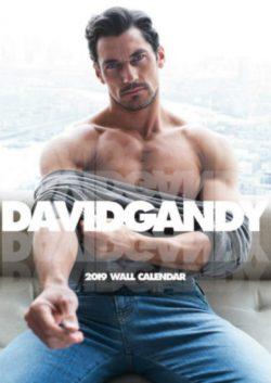 2019 David Gandy A3 Wall Calendar