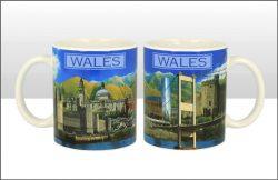 Wales Photographic Montage Mug