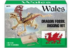Dig Out Welsh Dragon Fossil Kit