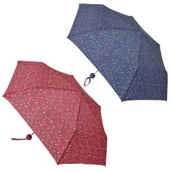 2 ASSORTED MINI UMBRELLAS